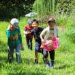 夏休み・アグリな活動・夏野菜収穫してバーベキューだって✨