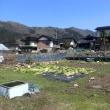 町中地区の畑