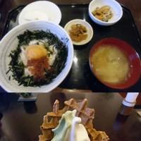 茶屋長作 広島産の蒸し牡蠣丼