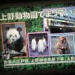 上野動物園でパンダ転職
