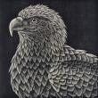 304. 長島 充 野鳥版画展 『日本の野鳥 in 谷津干潟』 The Birds of Japan