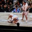 大相撲。大関強い