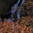 久しぶり、秋の「霧降の滝」。