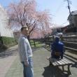 桜咲いたよ!