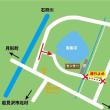 【マガン情報】10/14(土)ねぐら入り約30,000羽