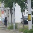 iwamizawa city hokkaido