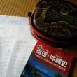 今日は沖縄民謡研究会「やんばるん」でした
