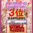 女子スプリングカップ2018ミニサッカー大会 結果