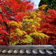 南禅寺から永観堂へ