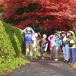 京都 伏見山の会 山行案内 12月