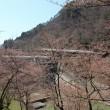 宮下ダムの様子(平成28年4月12日(火))