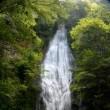 琴滝と御珍木