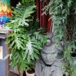 ブータン料理店