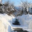 開放された真冬日