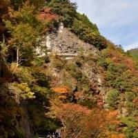 大轟の滝周辺の彩り