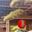 長谷寺の紫陽花ではなく『十一面観世音菩薩立像』