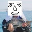 暴走外国船に恐れをなしてか瀬戸に魚がおらんのだ~