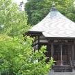 専念寺 (横浜)