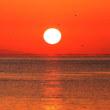 朝日の海 その1