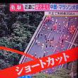【中国マラソン】【ルール】【小学生】