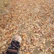 落ち葉の道は優しいね