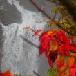 雨の日光でカメラ教室(明知平・華厳の滝)