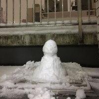 ハウスメイトと雪あそび