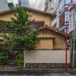 アラーキーの写真展を見に行く途中、渋谷を散歩してみたのです。-3