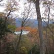 クマさんが住んでいる所を見に高取山に登りました
