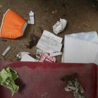 ゴミ拾い日記 180729~180804