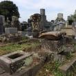 明日で「彼岸明け」お墓参りの際に、ずっと気掛かりだったコトがあったの・・・