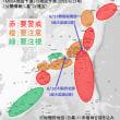 村井俊治氏の「MEGA地震予測」、大阪府北部の地震も予測失敗