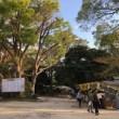 亥鼻公園の桜まつり