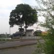東武「太田」駅~「福居」駅。その2。(「日光例幣使街道」。第3日目)