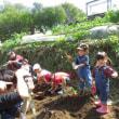 栃谷戸公園(サツマイモ掘り)