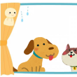 「犬のしつけ方教室」順延&診察時間変更のお知らせ☆