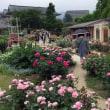 咲きほこる 庭にいっぱい バラの園