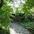 目白庭園から
