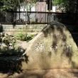 神田川を歩く(その1)