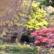 庭園公開で紅葉