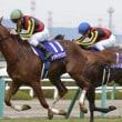 12/10 第69回 阪神ジュベナイルフィリーズ(GI)ラッキーライラック豪脚炸裂!