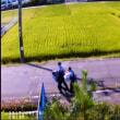 【速報】aiueo700さん、母親殺害の疑いで連行されていたこれはいけない。