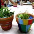 花育 多肉植物の寄せ植え教室 ◇ 燕市中央公民館 ◇