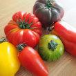 楽しいトマト