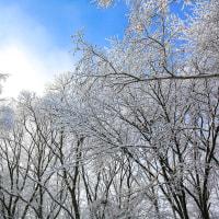 青空と雪景色の朝