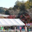 紅葉と桜花のコラボレーション 小原四季桜まつり