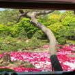 日本庭園〜由志園〜