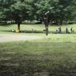 仙川と祖師谷公園