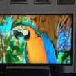 4kTV「Panasonic TH43EX600」