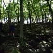 2017/09 台風一過の赤城山を登る(その1)